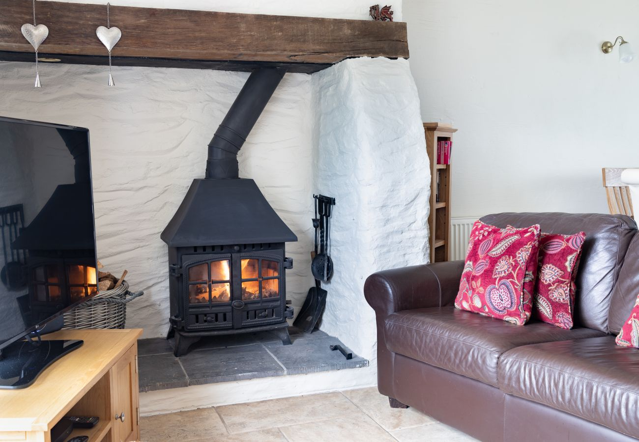 Landhaus in Eglwyswrw - Berry Cottage