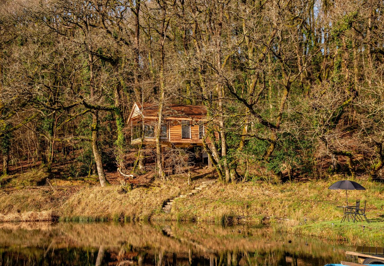 Farm stay in Germansweek - Yeworthy Eco-Treehouse