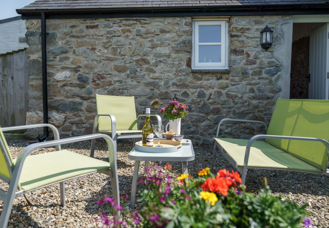 Cottage in Newport - Y Cwtch