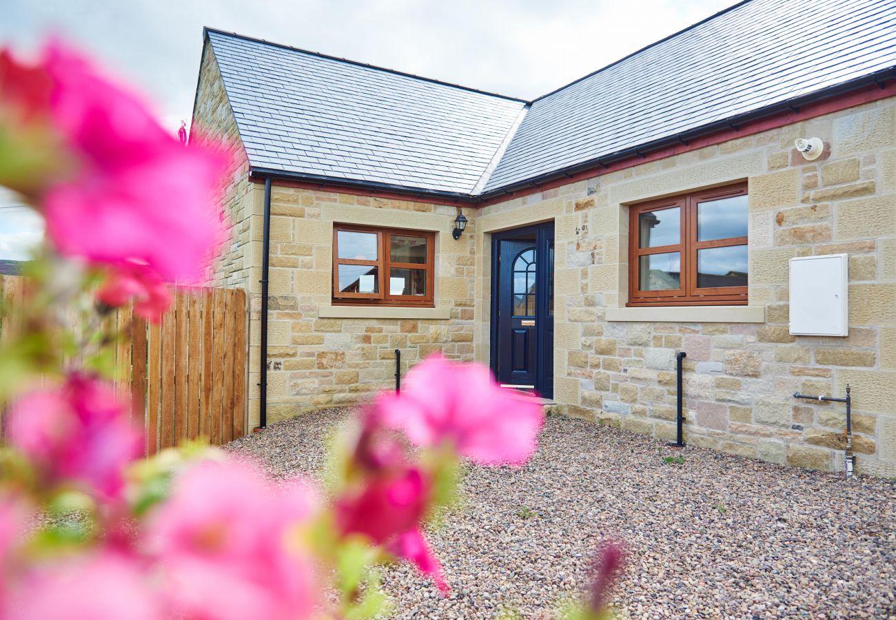 Cottage in Edlingham - Quail's Nest Cottage